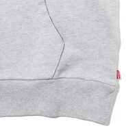 グラフィックフーディー HM ALT PO MIDTONE HEATHER GREY