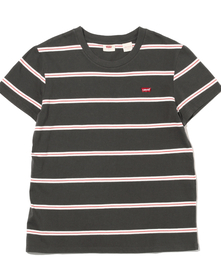 パーフェクトTシャツ AMIRA STRIPE FORGED IRON