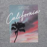 パーフェクトTシャツ  PINK CALIFORNIA SKIES SMOKESTACK